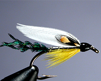 Duck Quills Fly